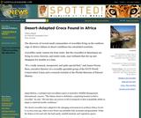 Desert-Adapted Crocs Found in Africa