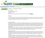 Make a Model Fossil