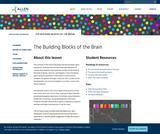 Allen Institute: The Building Blocks of the Brain