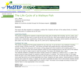 The Life Cycle of a Walleye Fish