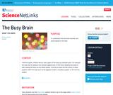 The Busy Brain