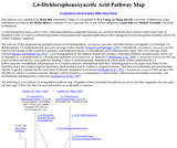2,4-Dichlorophenoxyacetic Acid Pathway Map