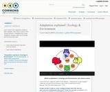 Adaptation explained   Ecology & Environment
