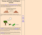 Energy and Order in Biological Systems