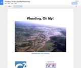 Flooding, Oh My!
