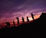 Understanding the Whole Child: Prenatal Development Through Adolescence