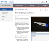 Human Body Regulation