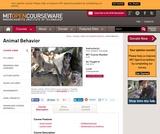 Animal Behavior, Fall 2013