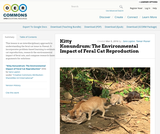 Kitty Konundrum: The Environmental Impact of Feral Cat Reproduction