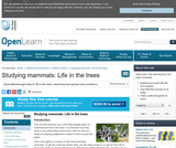 Studying Mammals: Life in the Trees