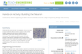 Building the Neuron
