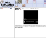 Testing for mutations in BRCA1, Mary-Claire KingSite: DNA Interactive (www.dnai.org)