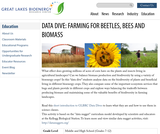 Data Dive: Farming for Beetles, Bees and Biomass