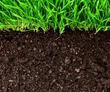 General Soil Science