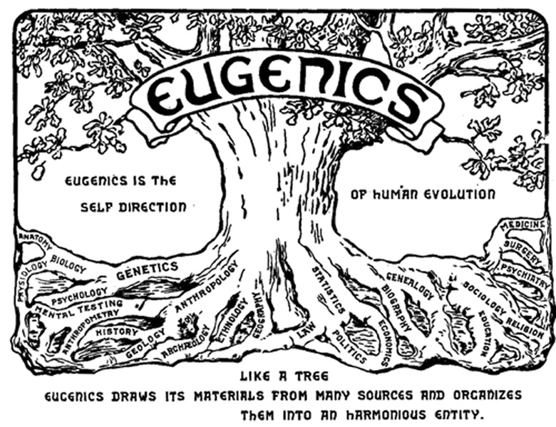 the issue of eugenics movement in the new wave of genetic technology The mission of mit technology review is to bring about better-informed and more conscious decisions about technology through authoritative, influential, and trustworthy journalism.
