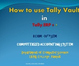 How to use Tally Vault