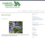 Fisher Iris Data