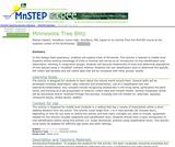 Minnesota Tree Blitz