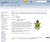 Buruli Ulcer Disease (Mycobacterium Ulcerans Infection)