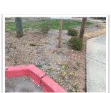 Compare Solutions for Erosion -- Out Teach