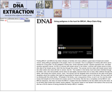 Using pedigress in the hunt for BRCA1, Mary-Claire KingSite: DNA Interactive (www.dnai.org)