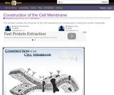 Construction of the Cell Membrane