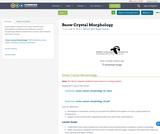 Snow Crystal Morphology