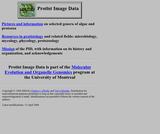 Protist Image Data