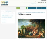 Chapter 3 Colonies