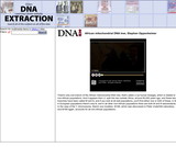 African mitochondrial DNA tree, Stephen OppenheimerSite: DNA Interactive (www.dnai.org)
