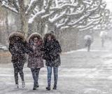Cold season specific conditions
