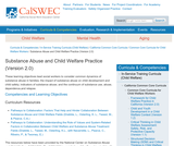 Substance Abuse and Child Welfare Practice (Version 2.0)