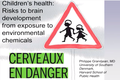 Children's health - Risks to brain development from exposure to environmental chemicals