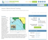 Marine animal tracking