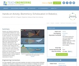 Biomimicry: Echolocation in Robotics