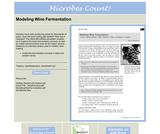 Modeling Wine Fermentation