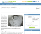 Sudsy Cells