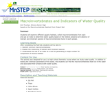 Macroinvertebrates and Indicators of Water Quality