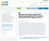 B5 Suicide Prevention with Youth: Implementing Suicide Prevention Protocols in Your Agency, Part 1