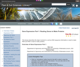Gene Expression Part 1: Reading Genes to Make Proteins