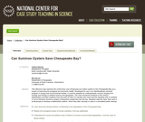 Can Suminoe Oysters Save Chesapeake Bay?