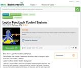 Leptin Feedback Control System