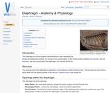 Diaphragm - Anatomy & Physiology