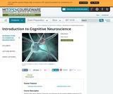 Introduction to Cognitive Neuroscience