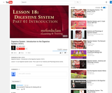 The Digestive System : Introduction to the Digestive System (18:01)