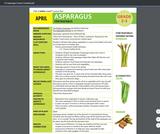Health Literacy: Grade 2-3 Lesson, Asparagus