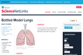 Bottled Model Lungs