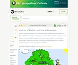 Analyzing an Ecosystem