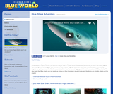 Blue Shark Adventure