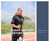 Human Anatomy Laboratory Manual, 2021